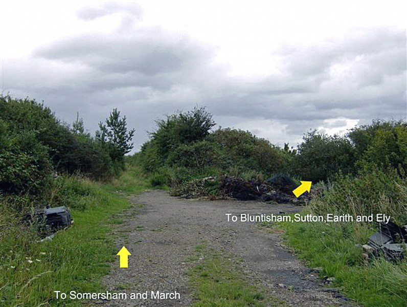 Site of Needingworth Junction on 17th August 2008. Nature has nearly completely taken over.  Photo with kind permission of Steve Parker.