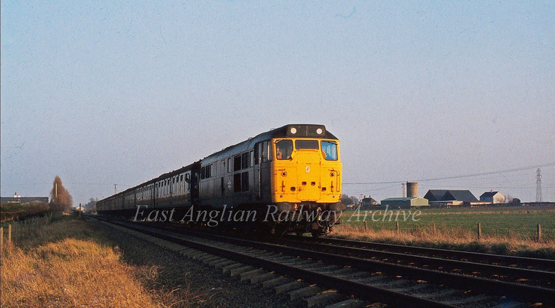 Reminiscent of past days, 31313 catches the setting sun  between Histon Station and Girton Road crossing. The working is a return RDS special from Liverpool Street to Swavesey.   12th April 1980.