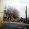 Slade End crossing gates north of Chatteris where the A141 crossed, (Doddington Road) looking north on 4th March 1967. Chatteris Station's Up distant can be seen  in the background. Today the new route of the A141 uses the track bed.  Photo with kind permission of Stewart Ingram.