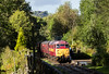 Summerseat station has taken on the appearance of a jungle clearing - 31466 pauses with the 15.04 from Ramsbottom to Bury 25 September 2016