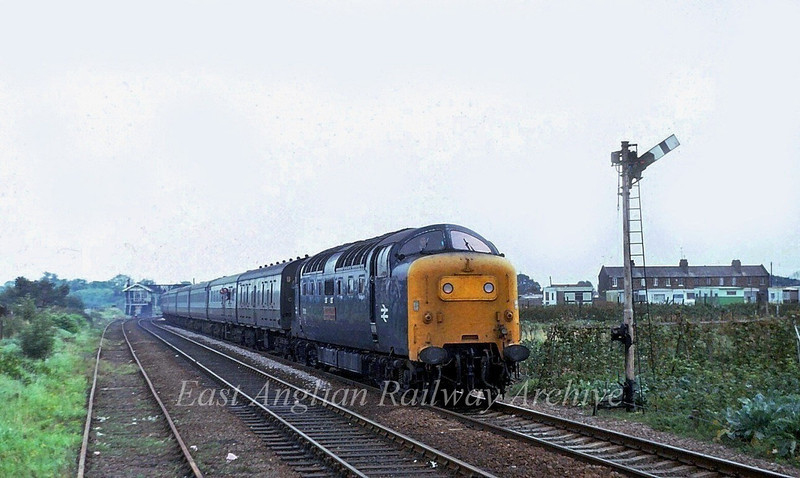 "55010 ""The Kings Own Scottish Borderer"" approaches Norwood Road Crossing, March with the 1005 Kings Cross to York on 23rd September 1979. March West Junction Signal Box can be seen in the distance."