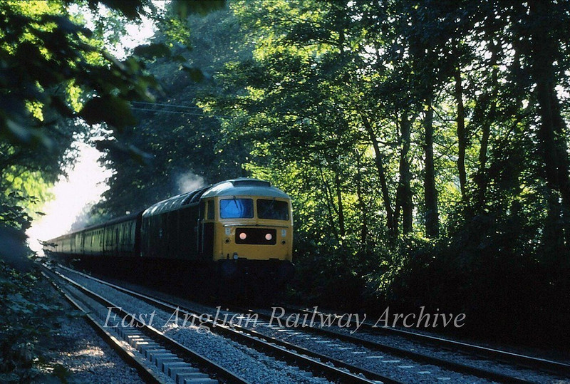 Pleasant arborial scene at Snailwell Bridge near Chippenham Junction as 47571 heads the 0717 Harwich Parkeston Quay to Manchester Piccadilly. 1st September 1980.