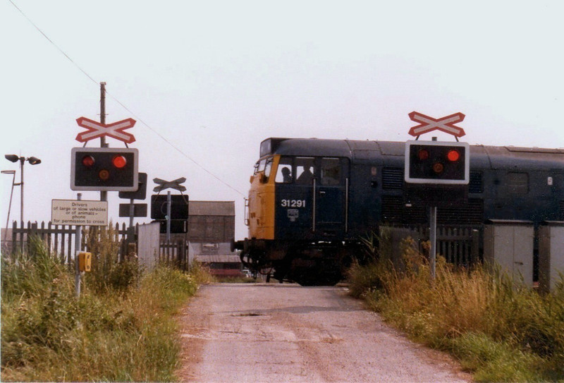 "Chivers Occupation Crossing between Shippea Hill and Lakenheath leads to a carrot washing factory. After two serious accidents with lorries, one in 1970 and one on December 3rd 1976 B.R. installed flashing warning lights. 31291 is passing with the 1236 Birmingham New Street to Norwich on 11th August 1979.  <a href=""http://www.railwaysarchive.co.uk/docsummary.php?docID=805"">http://www.railwaysarchive.co.uk/docsummary.php?docID=805</a>"