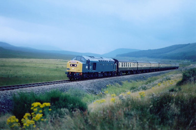 The light has just about gone as 40145 comes by Strathbran. The train had a 20 or so minute photo stop at Achnasheen.  27/8/2005