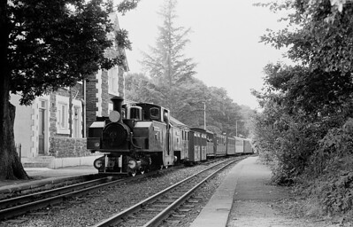 Earl of Merioneth draws into Minfordd in July 1981.   The earl was still newI at the time  If you have started at the beggining of this Gallery  - watch the appearance change as the years pass