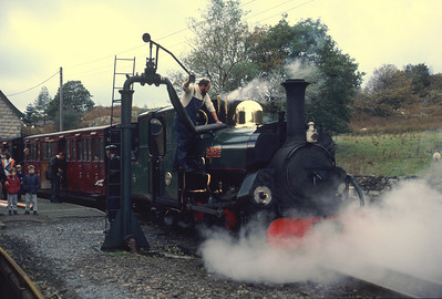Blanche taking water at Tan-y-Bwlch in October 1986