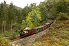 Finally before ducking out due to encroaching gloom Prince at Whistling curve 14.35 Porthmadog to Tan-y-Bwlch 8 October 2016