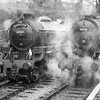 LNER B1 Class 4-6-0 61264 and WD 2-8-0 90733