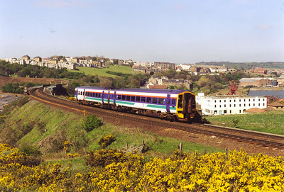 Back on the main line and the climb away from Inverkeithing to the Forth Bridge, 158739 passes in front of the bushes of broom in bloom! It is working 1B32 1310 from Aberdeen to Edinburgh.