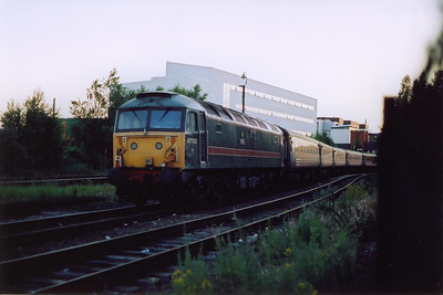 A railtour from Poole had workd in earlier in the evening. The train was top and tailed by Fragonset class 47 locos. 47703 is one loco on 1Z48 1653 off Poole. The sidings are at East Holme, Lincoln.  26/6/2005