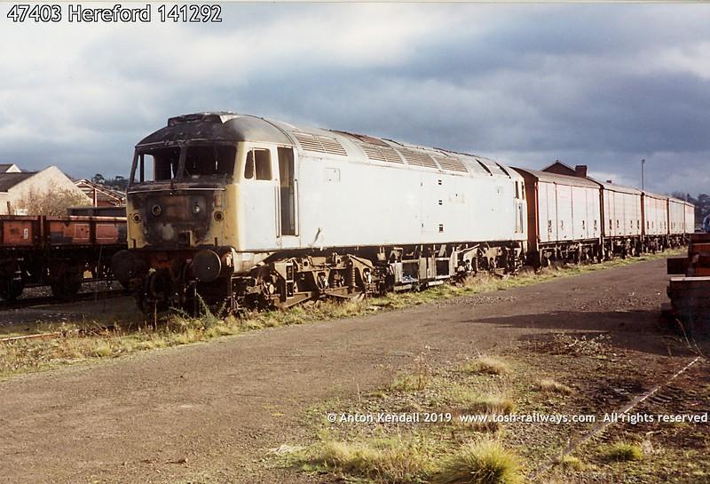 47403 Hereford 141292