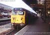 50050 Exeter St Davids 91