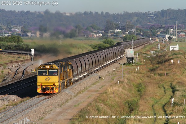 5022 5002 Whittingham (4)
