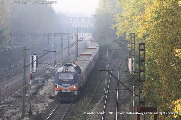 311D-05 Sosnowiec Dororta 300914
