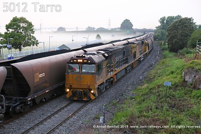 5012 Tarro