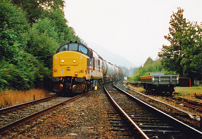 A move to Ardlui and 37410, in InterCity colours, rolls in with a mixed freight from Fort  WIlliam to Mossend.  The consist is made  up of empty oil tanks, empty china clay slurry tanks and bogie bolsters loaded with rolls of paper.  2/9/1991
