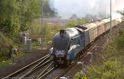 4464 Bitternclimbing up at Polmont Junction