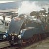 4468 Mallard,  moved onto the National Railway Museum for servicing while train passengers enjoyed a buffet lunch at the Museum