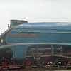 4498 Sir Nigel Gresley, was at the Museum to meet up with Mallard