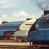 Classic front end shot of 3 A4s at the Museum - Sir Nigel Gresley, Silver Link (Bittern in disguise) and Mallard