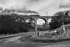 45699, Galatea,  roars up Grayrigg bank , across Docker garth viaduct at the head of the  the Cumbrian Coast Express - 4 March 2017