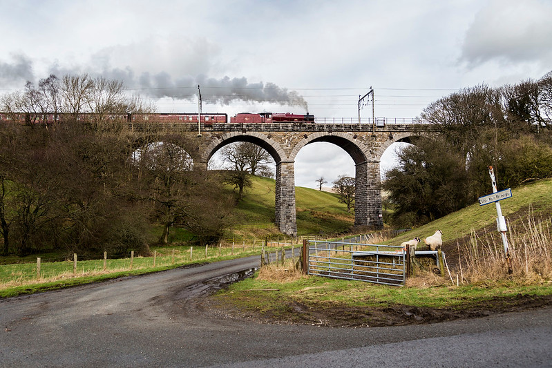45699, Galatea,  roars up Grayrigg bank , across Docker garth viaduct at the head of the  the Cumbrian Coast Express - 4 March 2017