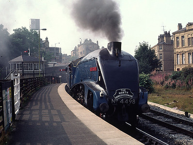4498 Sir Nigel Gresley at Shipley.   It is turning after bringing empty stock from the regular Carnforth- Skipton North Yorkshireman to Bradford	8/9/81