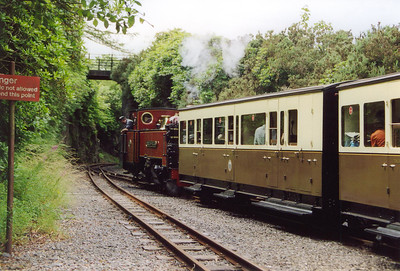 On time at 1415, the driver on No 9 gets his train away.  On leaving Devil's Bridge, the railway enters a narrow rock cutting.