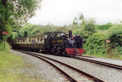 The next arrival at Devil's Bridge is No 8 with the 1400 off Aberystwyth.  The line was built by the Vale of Rheidol Railway opening in 1902 to carry ore from the nearby mines.  After a couple of years tourists were being taken for a ride.  The Cambrian Railway took the line over in 1913 and in 1923 it passed into the hands of the GWR.  On Nationalisation British Railways inherited the line and the three steam locos had the honour of outliving their standard gauge cousins after 5th August 1968.  BR kep the line until it was sold to the preservation movement in 1988.