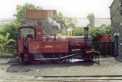 No 11 on shed at Port Erin. The sun is glinting from the boiler between the dome and the safety valves. The fireman is cleaning his fire.
