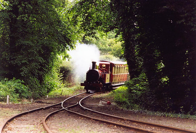 No 10 comes through the gap in the trees and will run into Port Soderick station. Trains used to pass here but a change in the timetable has them passing elsewhere now.