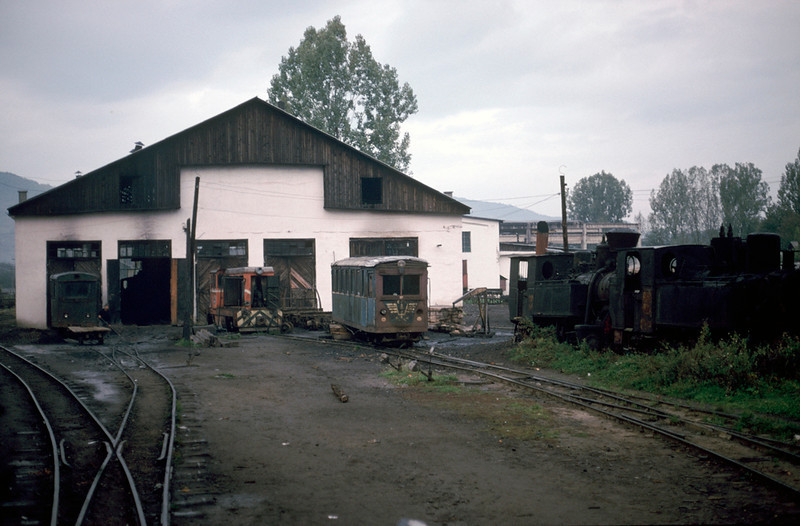 Early morning on the shed at Visieu de sus, variosu dumped stema locos, railcar and trailer and an Lxd-2 diesel loco