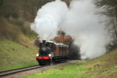 16th March 2019. Branchline Weekend, Bluebell.