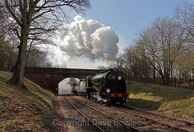 10th March 2015. 847 on the Bluebell