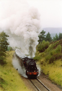 48151 is now over two hours late and the gathered photographers are treated to the sight and sound of the 2-8-0 tackling the 1 in 60 slog with no sand and a wet and greasy rail. During the wait, rain and ice showers passed by........horizontally!