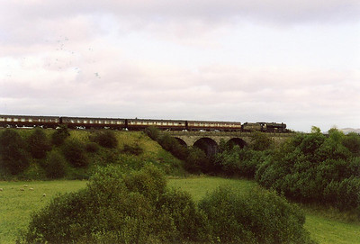 The Shocie Viaduct is almost lost in the trees and undergrowth. 48151 and its train passes over the top heading for Perth and another water stop.