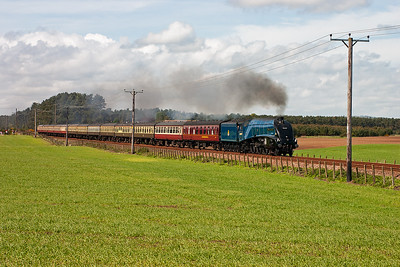 Ex LNER A4 pacific 60007 Sir Nigel Gresley graces the metals of the ECML between Edinburgh and Dundee with the second day of a three day tour from London Kings Cross to Dundee with steam haulage throughout.  Here it approaches Bow of Fife level crossing with 13 on.  17/5/2009