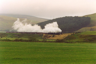 A call from Peter Drummond about a rumour of this working produced a flurry of calls with confirmation coming from Ian Storey. 75014 and 44767 head south along the WCML near Crawford with the Millerhill to Carnforth ECS working of the Fort William locos and coaching stock.  16/10/1997