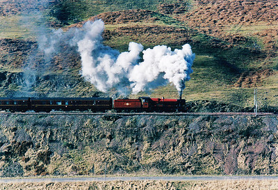 Greskine Bank is part of the 10 mile climb from Beattock station to Beattock Summit which rules at 1 in 69, the steepest section.  A former Great Western Railway Hall class loco 5972 slogs up the climb.  17/2/2003