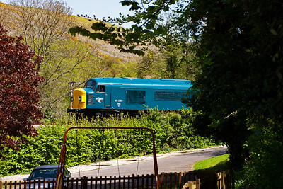 Framed by the trees and swing at the end of the beer garden and lit by the hot early afternoon sun, 45060 comes to a stand with 2N13 1310 Swanage to Norden.