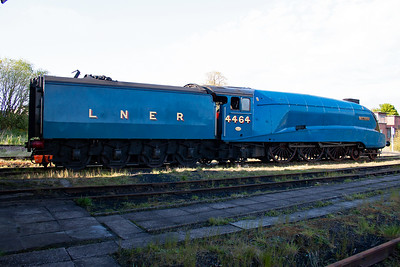 When Bittern was preserved it did not have a corridor tender, but the current owner, Jeremy Hoskins, had one built when the loco was overhauled. It carries LNER Garter Blue livery and full side valances.