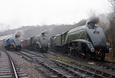 """A cold and wet early morning on shed at Grosmont and the shed staff have hastily arranged the three steamable A4 pacifics together for a photographic pose. Resident 60007 """"Sir Nigel Gresley"""", and visiting 60009 """"Union of South Africa"""" with 60019 """"Bittern"""" make up part of the line up for the Spring 2008 LNER gala. 28/3/08"""