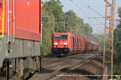 185383-7 Hannover Waldheim 241019