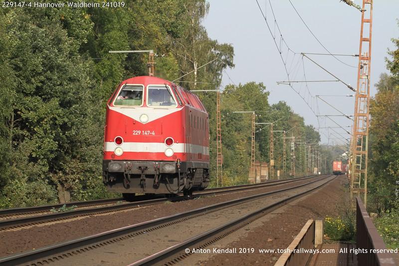 229147-4 Hannover Waldheim 241019