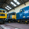 A few of the beasts in Toddington Shed 29/12/15