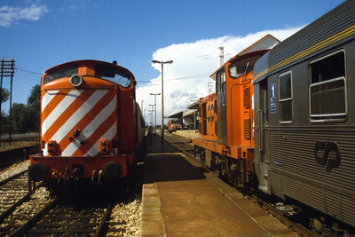 1421 and 1422 at Loule