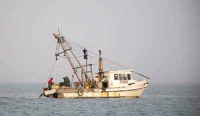 Oyster boat in one of the very large bays off the gulf...