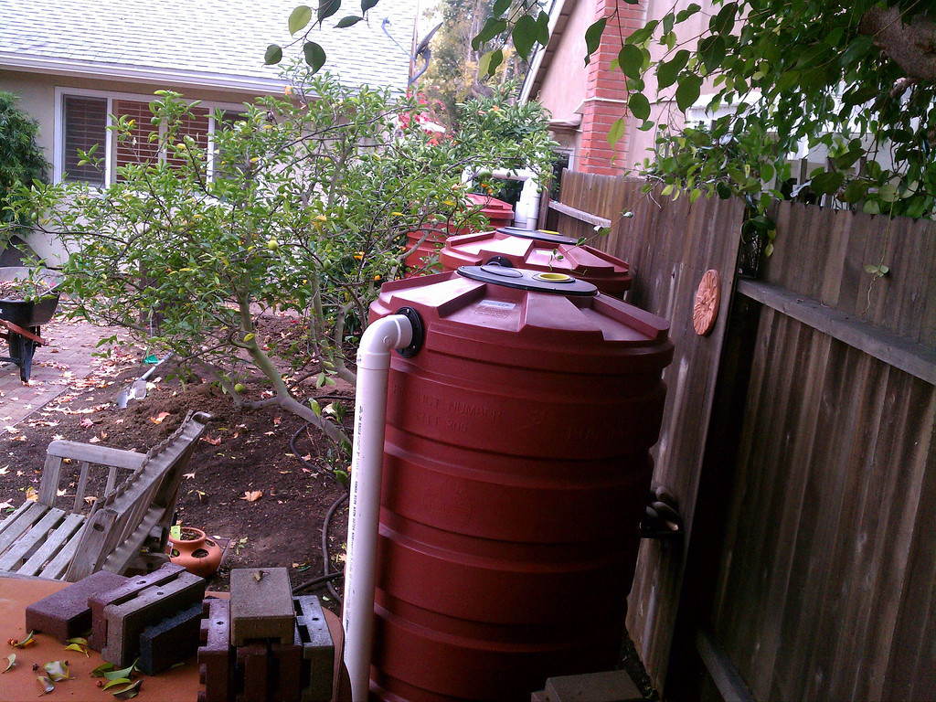 Wet System Bushman 205 Gallon Tanks, Huntington Beach, CA