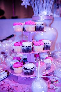 raina_baby_shower_pic-27