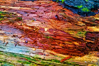 Rainbow Wood #3: Big Four Mountain